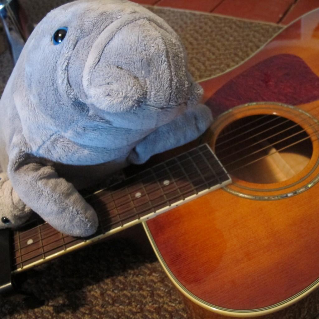 Manatee guitar